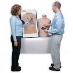 Nasco Complete Anterior Auscultation Practice Board with Case
